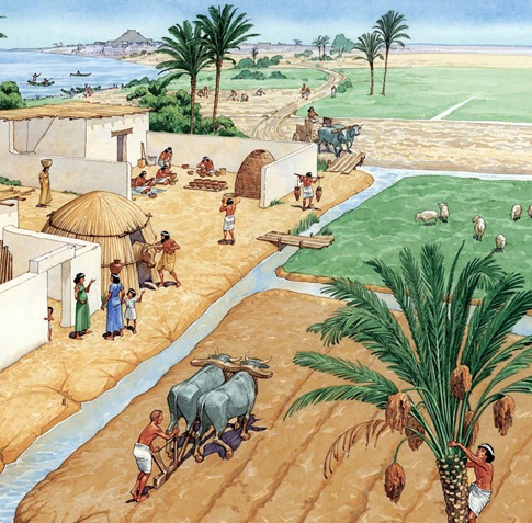 Agricultural revolution mesopotamia